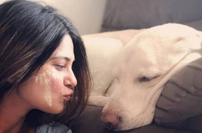 On Holi, Jennifer Winget makes an appeal to Spare The Stray