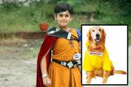 'Entertainment' canine to do cameo in 'Baal Veer'