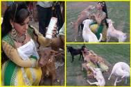 Meet Sambhavna Seth's NEW family members